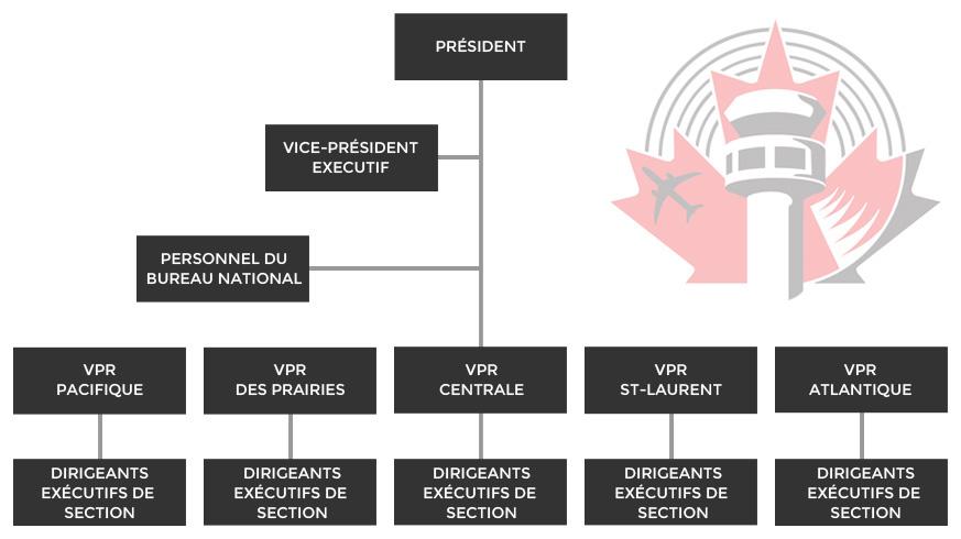 org_chart_fr